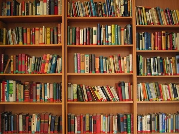 Read literature book books bookshelf 121 67049
